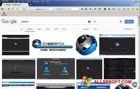 Screenshot Cyberfox Windows XP
