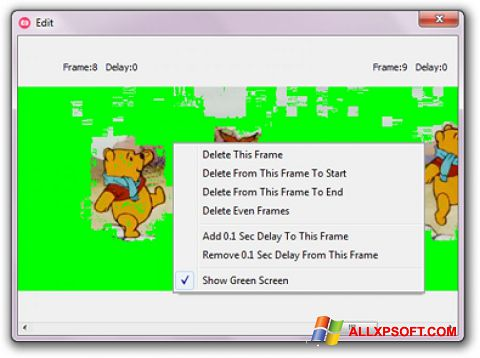 Screenshot GifCam Windows XP